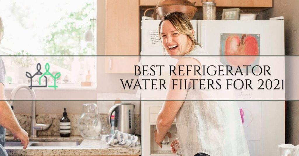 best fluoride water filters for 2021